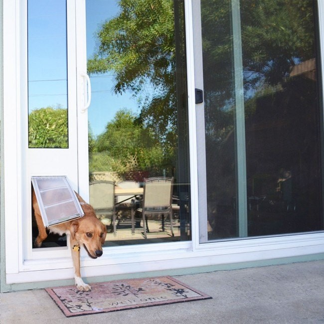 Review: Dog Door In Glass Installation